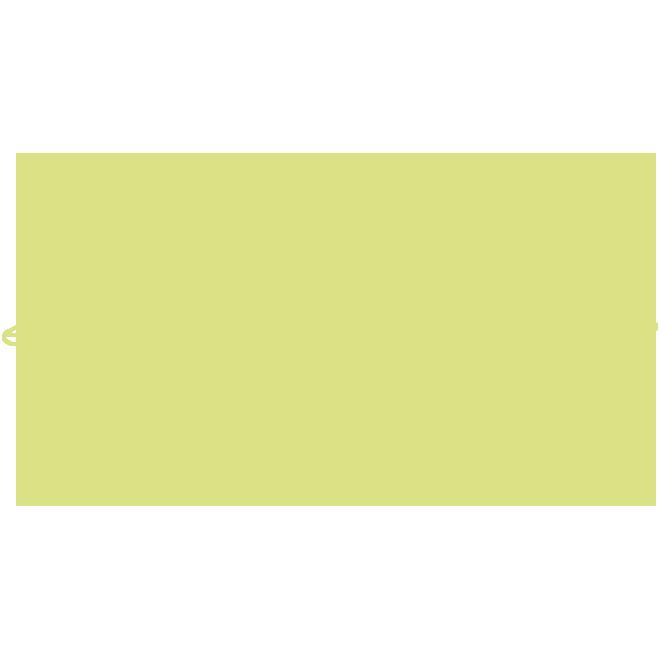 Eier aus Bodenhaltung undFreilandhaltung
